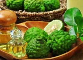 Bergamot Yağının Kullanımları