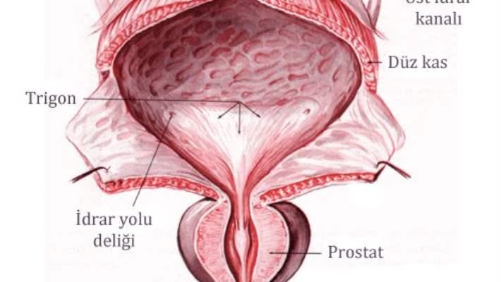 Prostat Tedavisinde Yeni Teknoloji