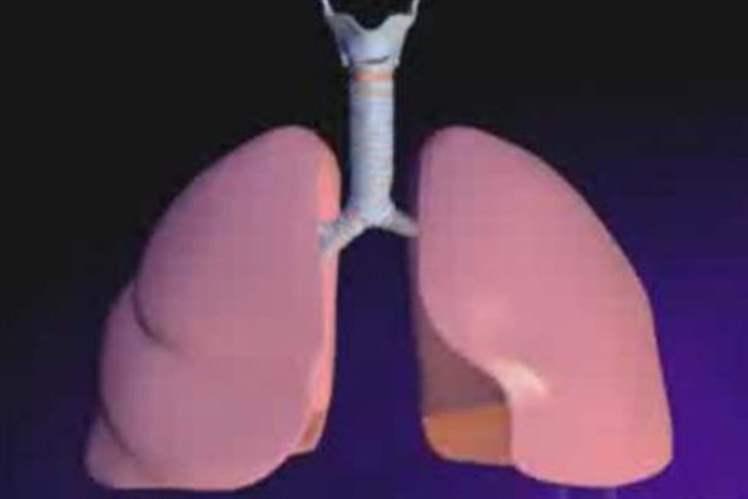 Akciğer Hastalıklarına Genel Bakış