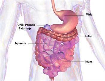 Crohn Hastalığı Hakkında 5 Yanlış İnanış