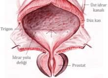 Prostat Ameliyatının Yan Etkileri