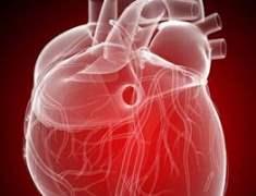 Kadınlarda Kalp Krizi: Nasıl Farklılık Gösterir?