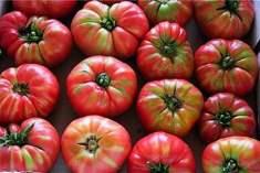 Organik Gıdalar Hakkında Doğru Ve Yanlış Bilinenler
