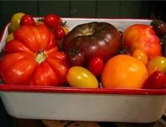 Mutfağınızdaki Doğal Malzemelerle Hazırlayabileceğiniz Yüz Maskeleri