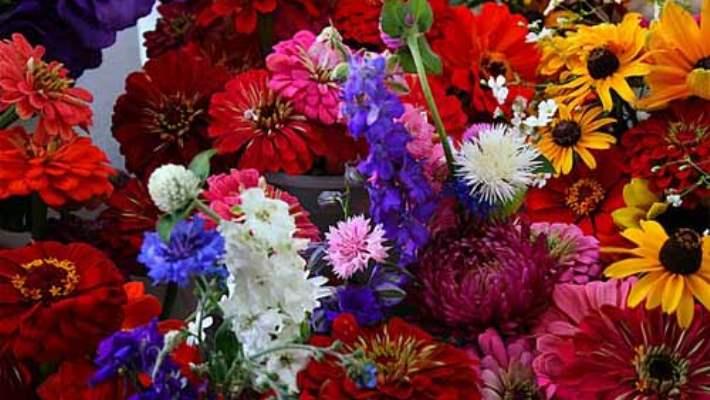 Güzel Bir Cilde Sahip Olmak İçin Çiçekler Ve Güzel Kokulardan Vazgeçmeyin