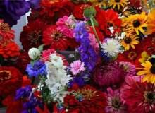 Popüler Düğün Renkleri Ve İlişkili Temalar