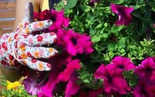 Yaz Ayları İçin Düğün Temalarına İlişkin Öneriler