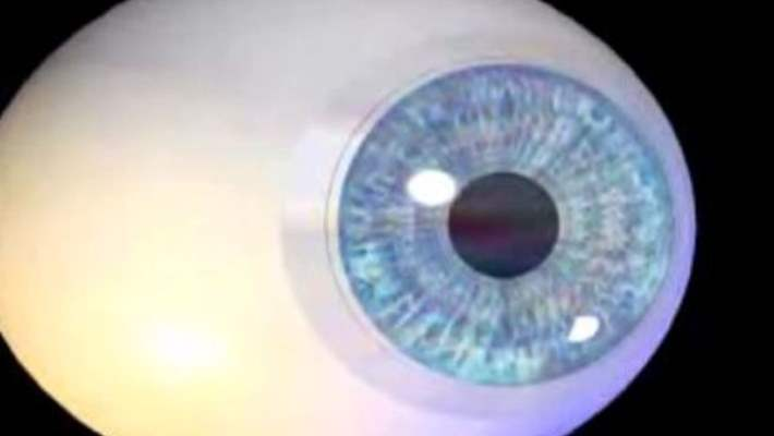 Retinitis Pigmentosa (Gece Körlüğü)