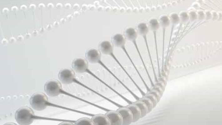 İnsan Genomu