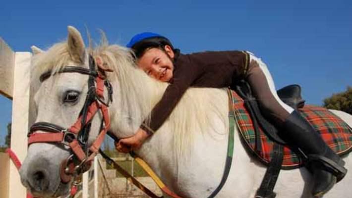 At Binerek Tedavi Oluyorlar