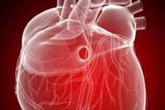 Konjestif  Kalp Yetmezliği Verileri