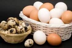 Kolin maddesi içeren yiyecekler hafızayı güçlendiriyor