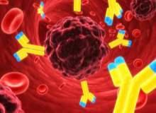 Kanserlerin Yüzde Kırktan Fazlası Yaşam Tarzıyla İlgili