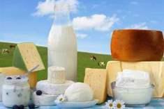 Süt Ürünlerinin Faydaları