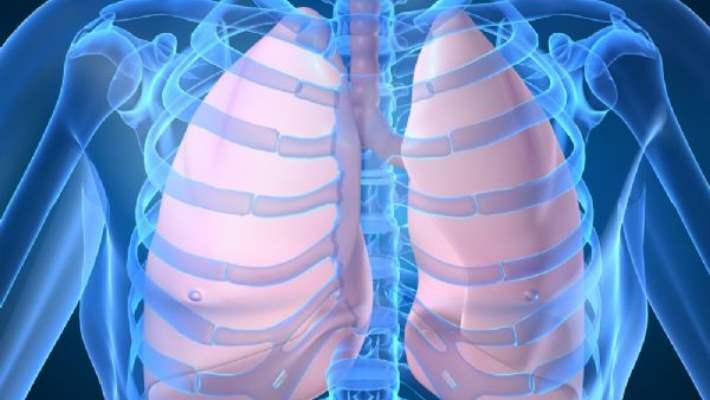 Türkiye'de Tüberküloz Hastalığı