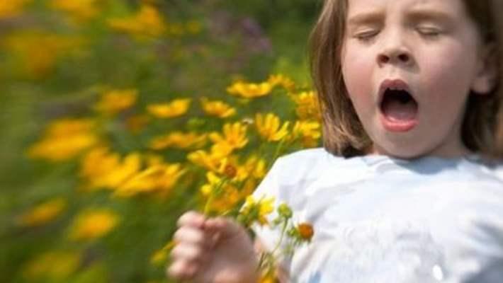 Polen Alerjisi Hangi Mevsimde Görülür?