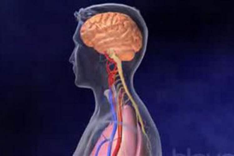 Beyin Tümörlü Hastada Kemoterapiye Gen Tedavisi