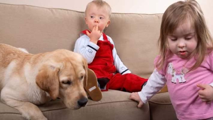 Çocuklarda Zihinsel Gelişim Sorunlarının Belirtileri Nelerdir?