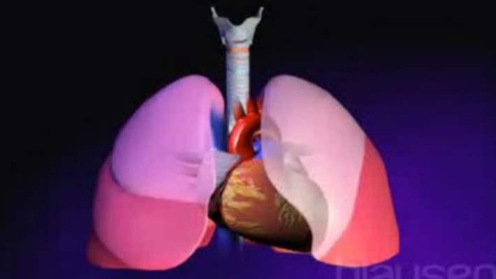 Akciğer Embolisinde Yaşam Tarzı Değişiklikleri Nelerdir?