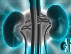 Metabolik Sendrom Böbreğin Fonksiyonunu Kötüleştiriyor
