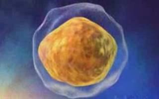 Kök hücreden tiroit yapıldı