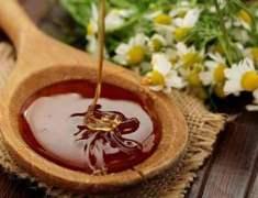 Bal Bağışıklık Geliştirebilir ve Kaygıyı Azaltabilir