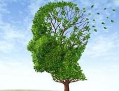 Kötü Beslenme Alzheimerı Tetikliyor