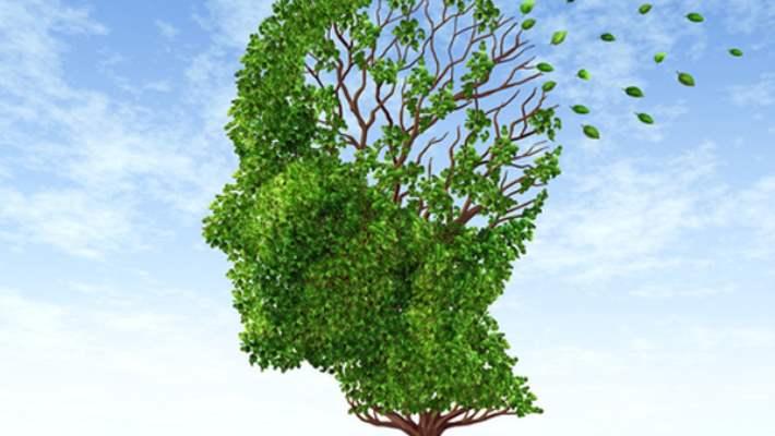 Alzheimera Yatkınlık Geni Bulundu