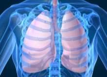 Viral Akciğer Enfeksiyonu