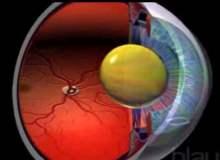 Göz Yaralanmaları