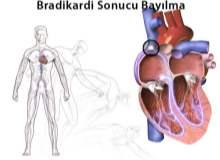 Yavaş Kalp Atımı: Bradikardi