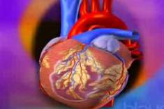 Kalp Hastalığı Riskini Azaltmak için Kolesterolü Düşürmek