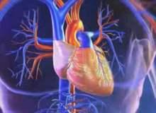 Kalp Üfürümleri