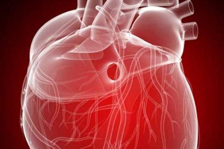Ventriküler Septum Kusuru (Delik Kalp)