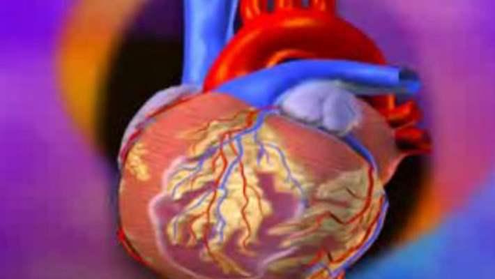 Kalp Yetmezliği İle Yaşamak