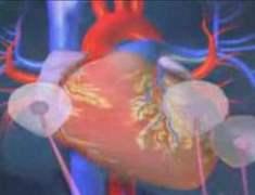Hızlı Kalp Atımı: Taşikardi