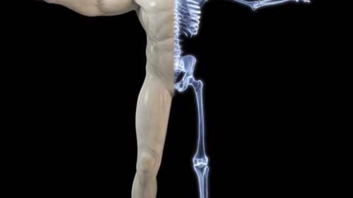Kemik Taraması