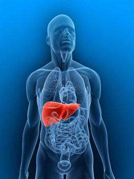 Karaciğer Nakli