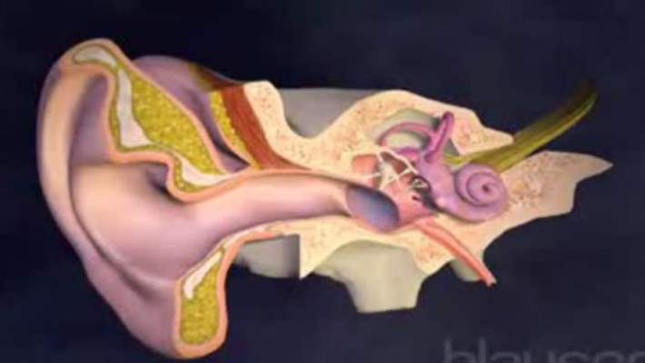 Orta Kulak İltihabı