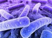 MRSA Enfeksiyonları