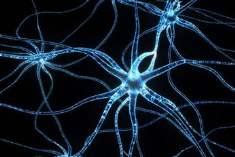 Açıklanamayan Sinir Sistemi Ağrıları: Nöropatik Ağrının Gizemi