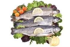 Gebelik ve Balık