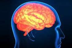 Beyninizi Egzersizle Eğitin