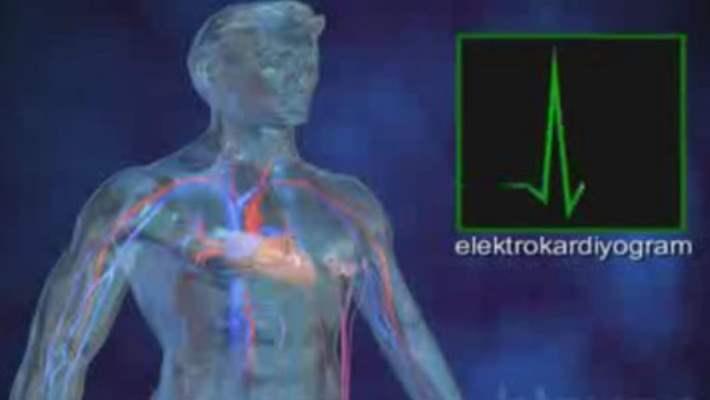 Kalp Hastalıkları Ve Hipertrofik Kardiyomiyopati