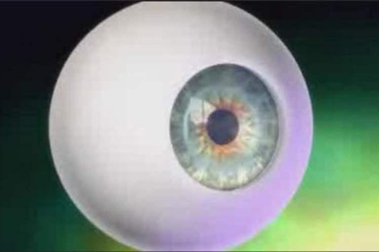 Göz Küresi