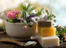 Tedavi Amaçlı Kullanılan Bitkiler