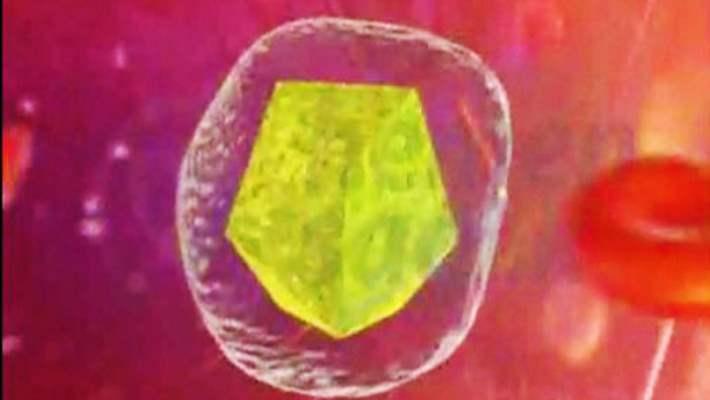 Anti-Tnf İlaç Tedavisine Başlamadan Önce Hepatit B Taraması Nasıl Yapılmalı?