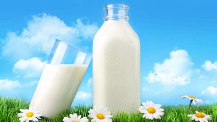 Sütün Beslenmedeki Önemi Nedir?