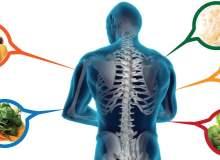Kemikleri Güçlendiren Besinler