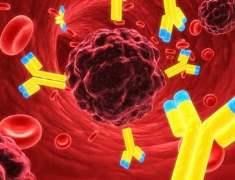Rahim Kanseri Genetik Kanserlerin İpucu Olabilir